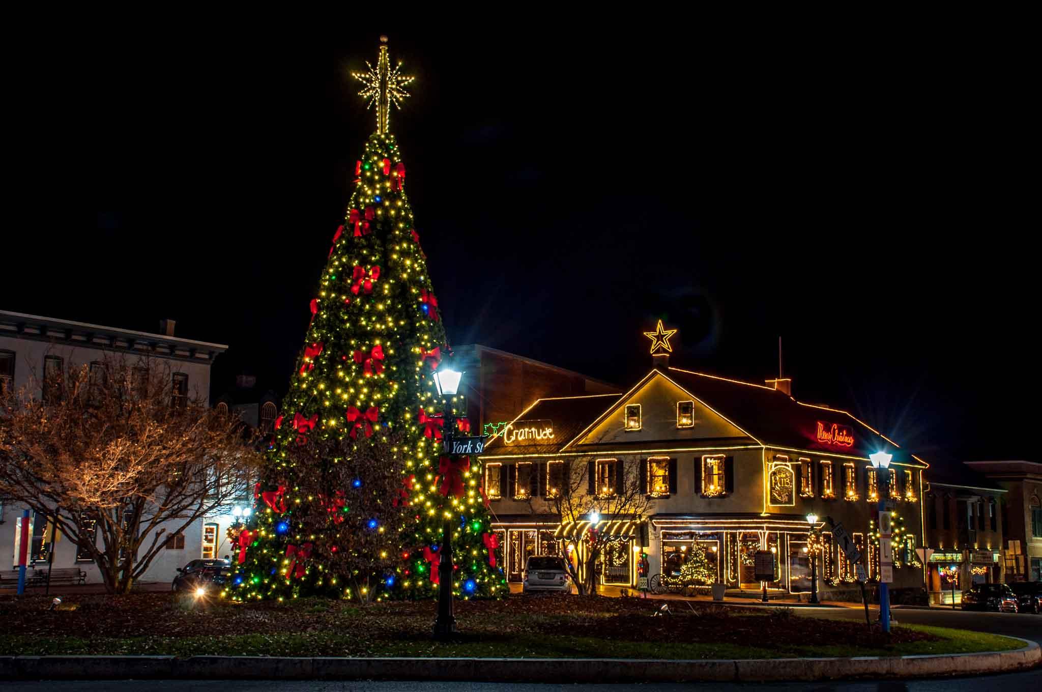Christmas tree and buildings lit up for Christmas