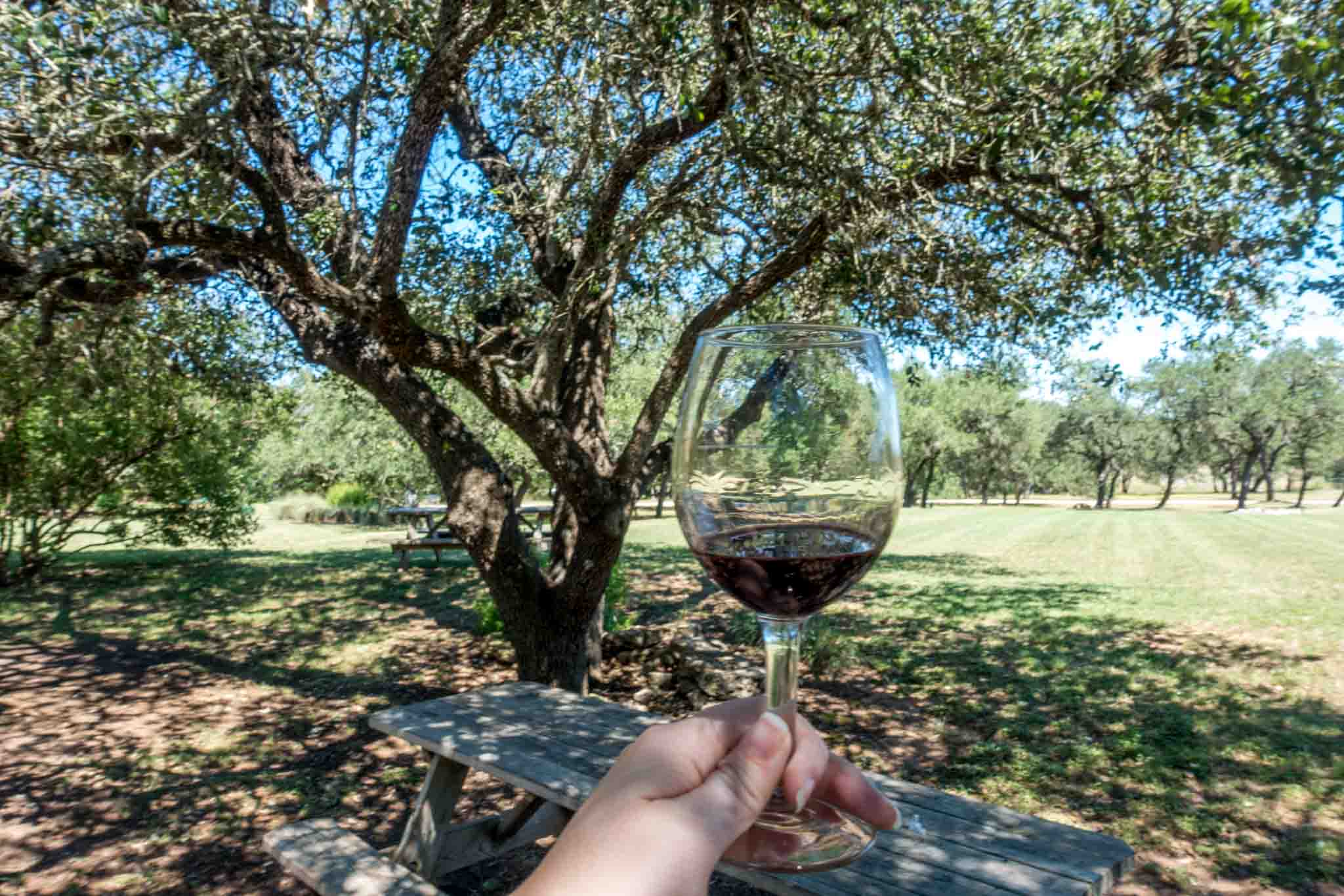 Hand holding a glass of red wine under a tree