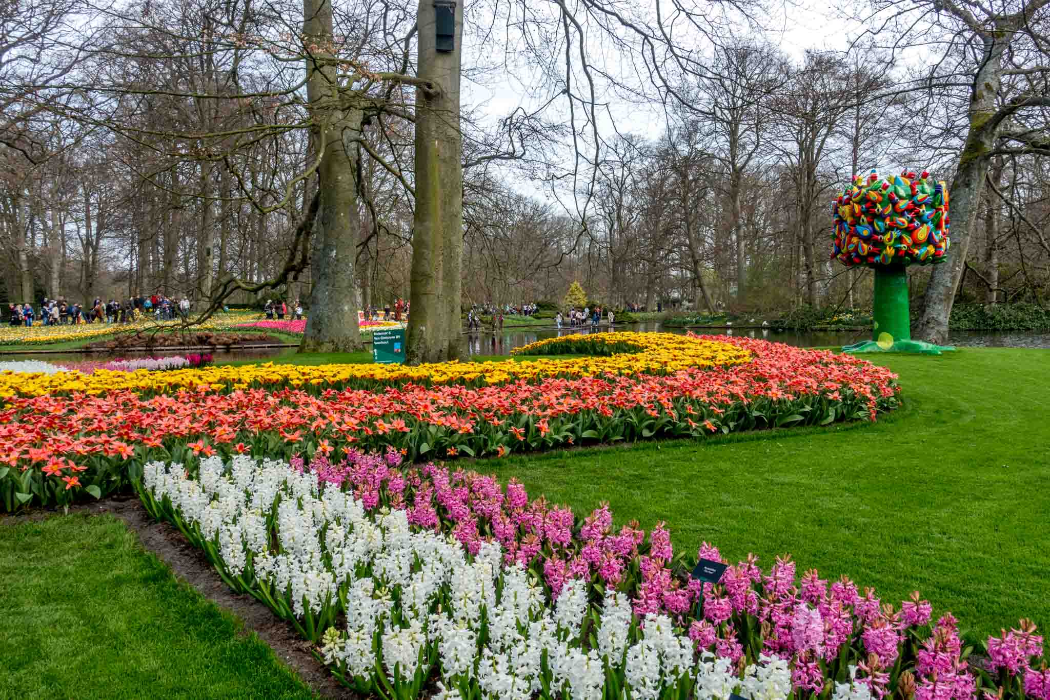 Rows of hyacinths and tulips beside a large, multicolored sculpture