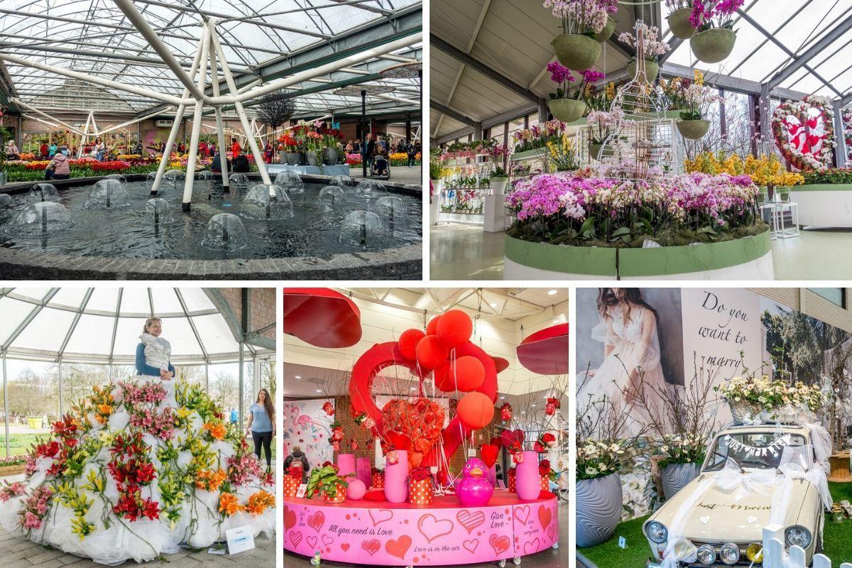 Indoor flower displays and spring decorations