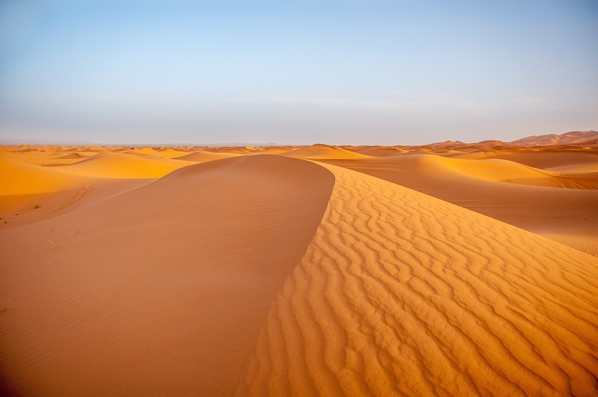 Rolling sand dunes in the Sahara Desert.