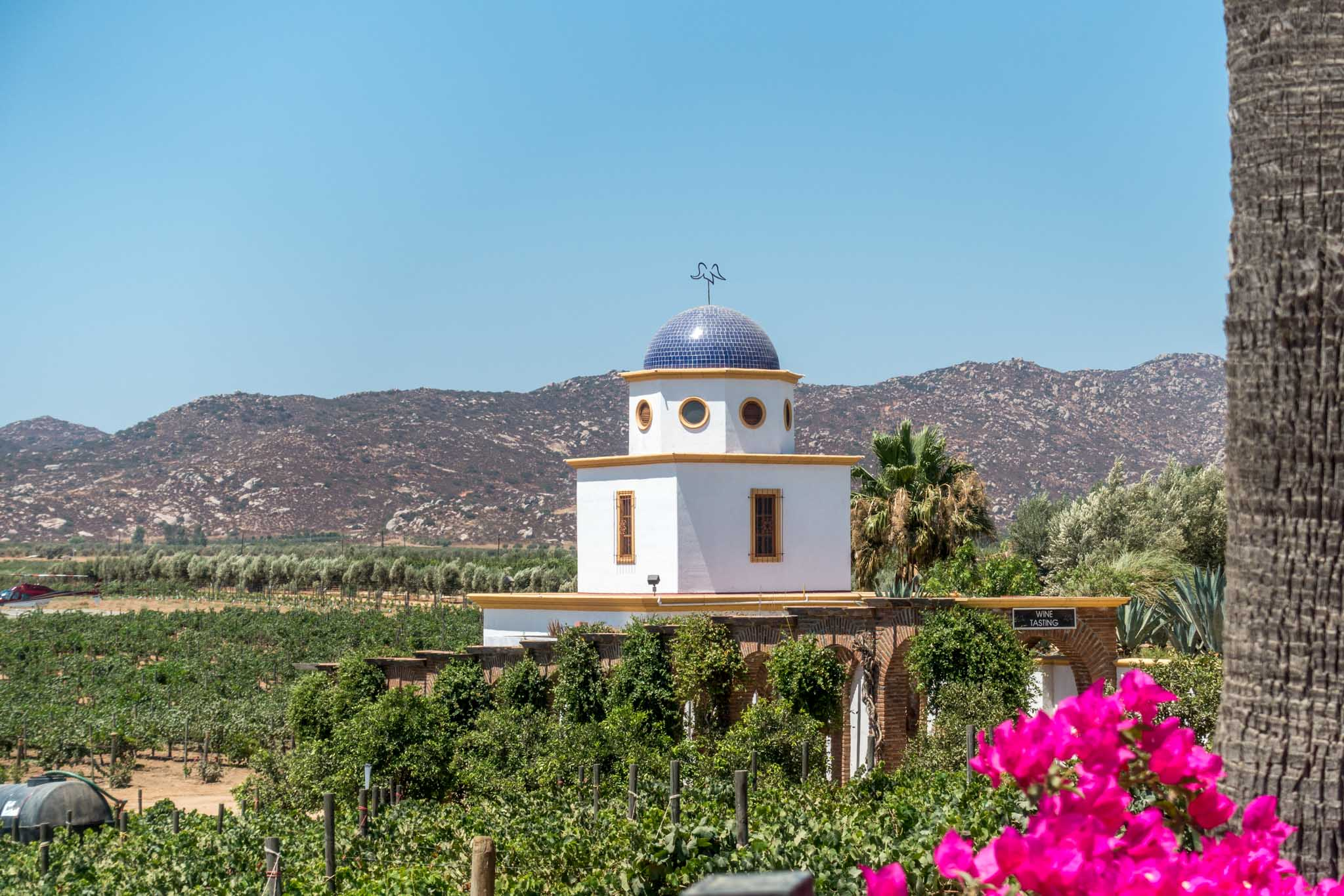 A building in one of the Valle de Guadalupe wineries.