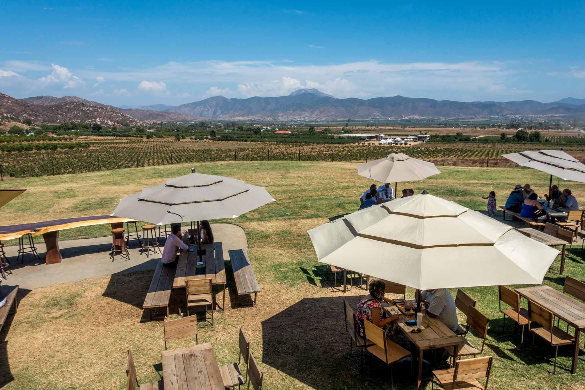 Tables under umbrellas in the Decantos Winery