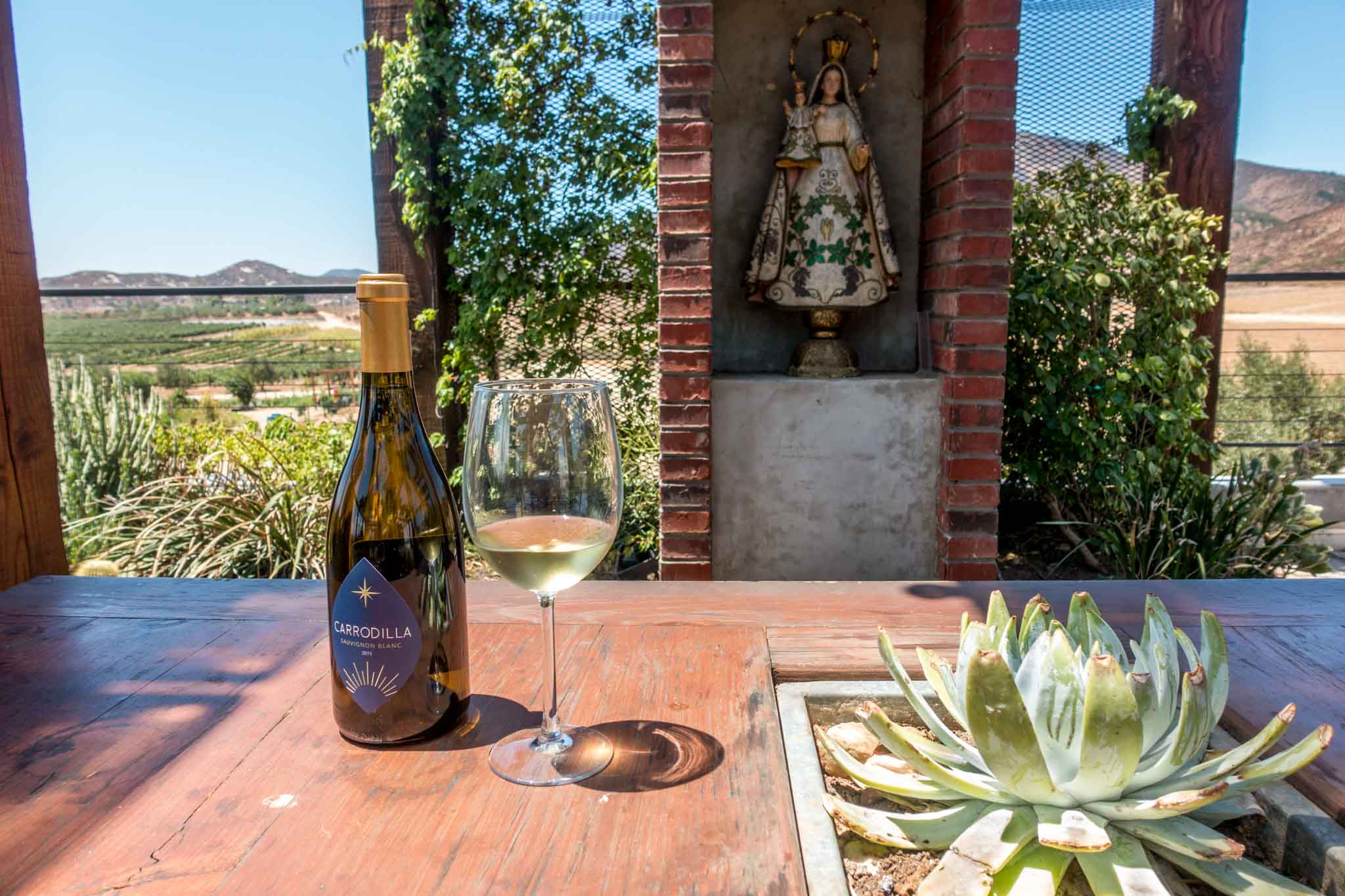 Enjoying the wines from the Mexico wine country in a garden