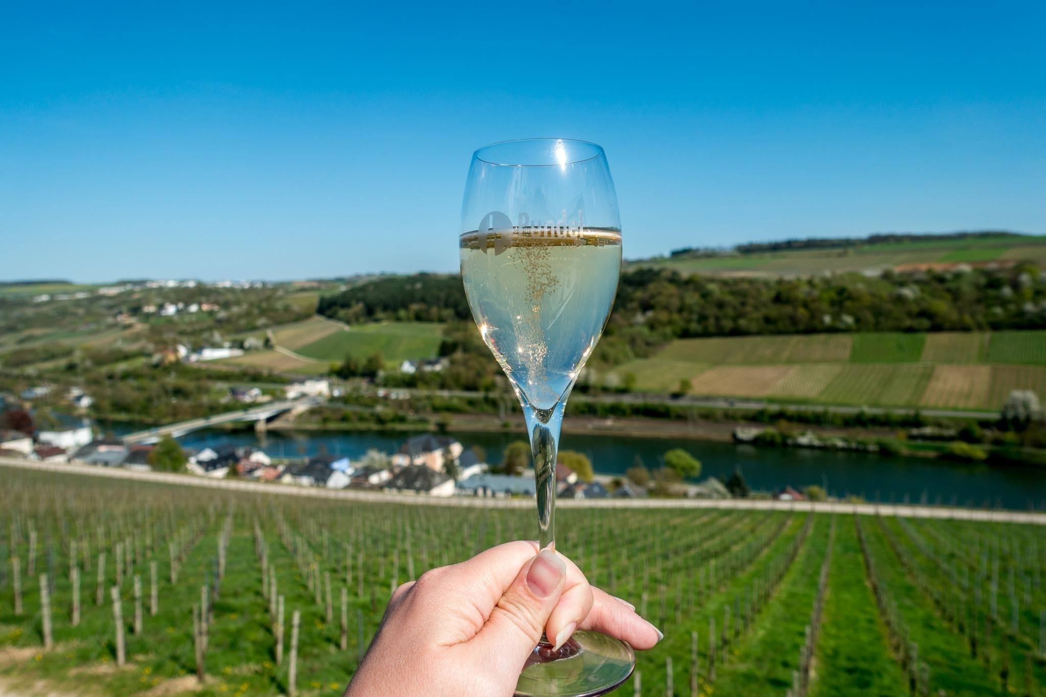 Glass of sparkling wine and view of Moselle River Valley