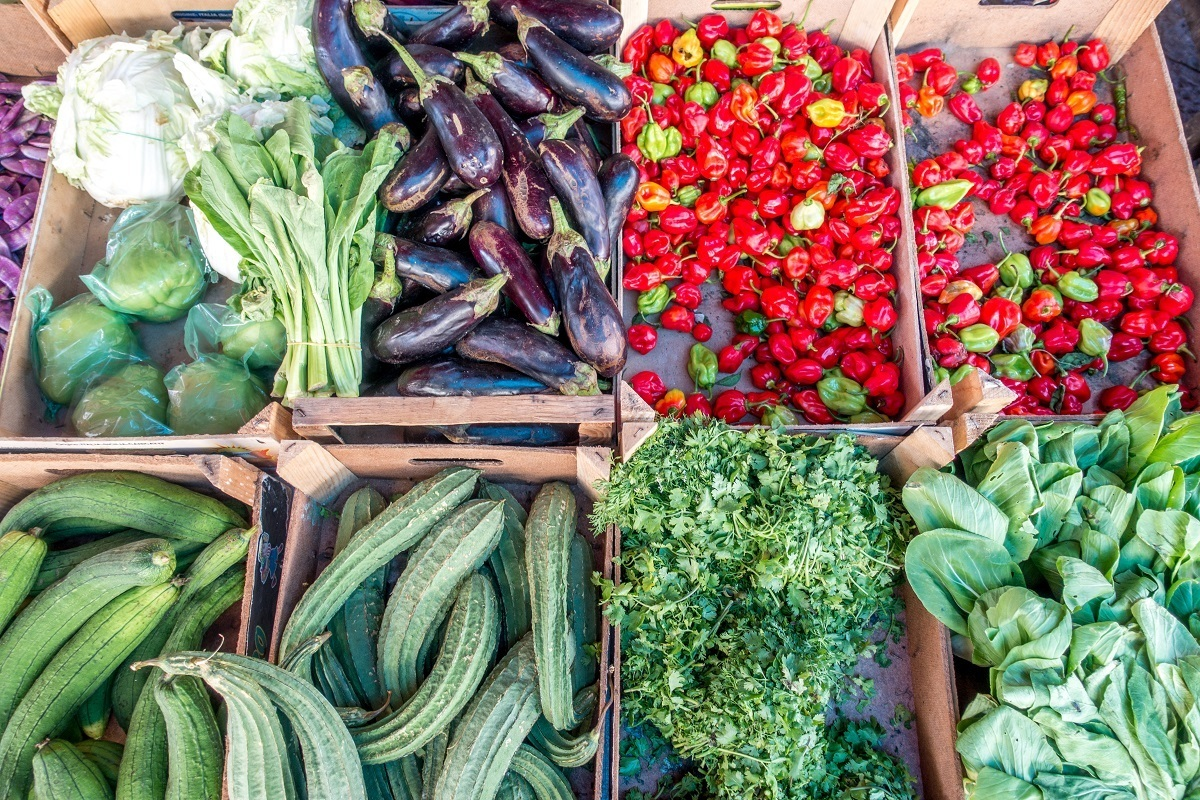 Vegetables on display for sale