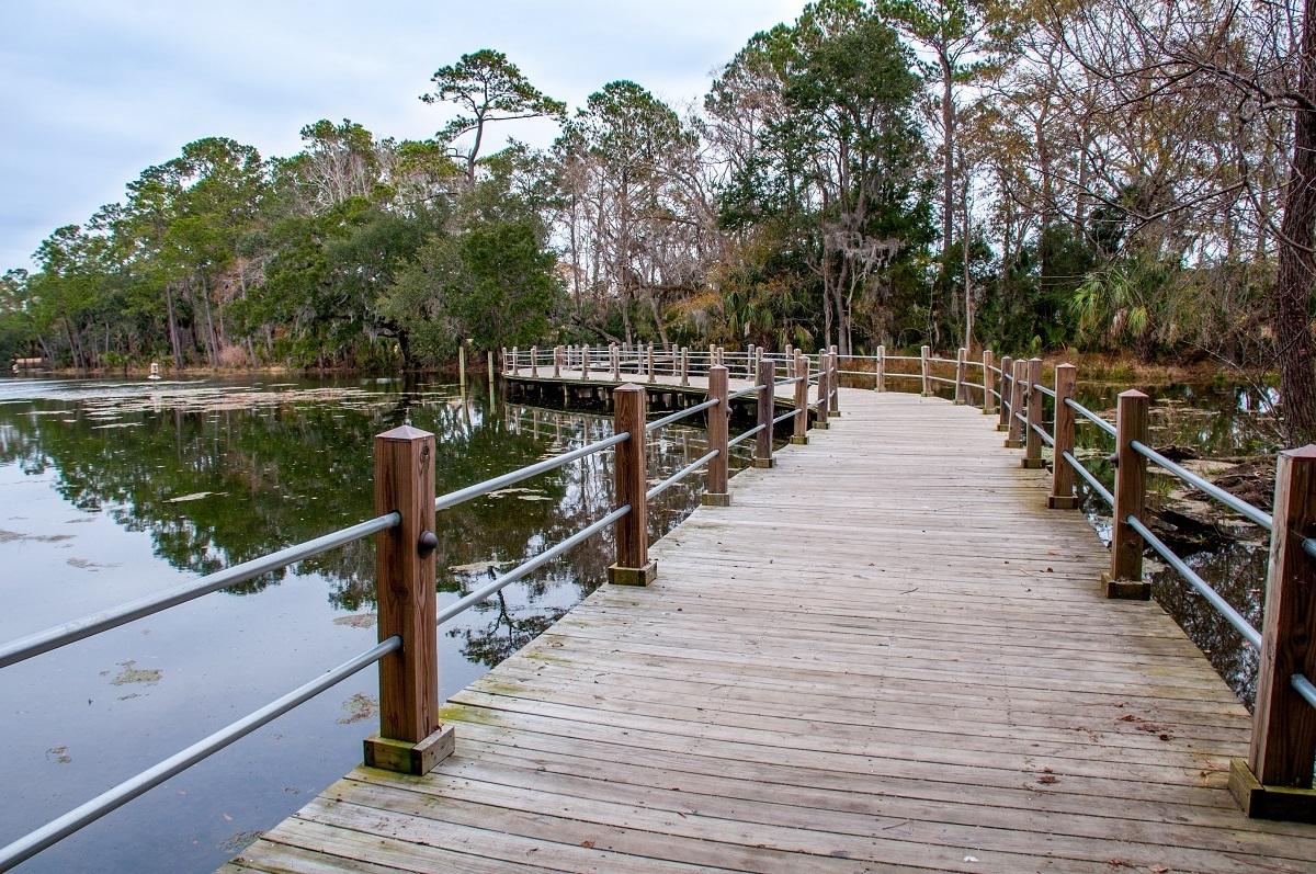 Wooden walkway over water