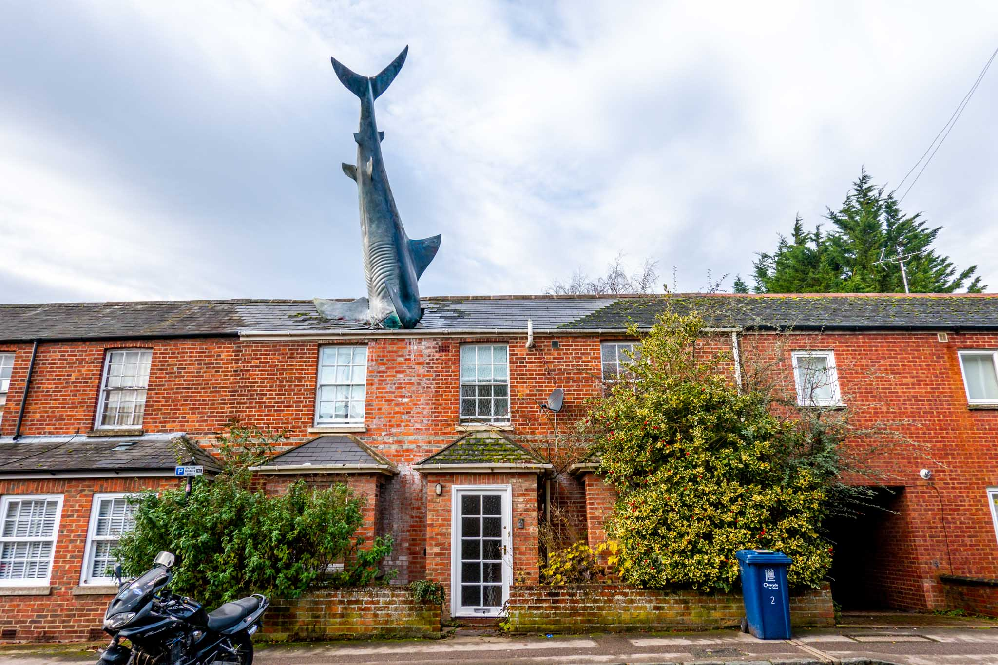 Shark sculpture protruding from the roof of a home