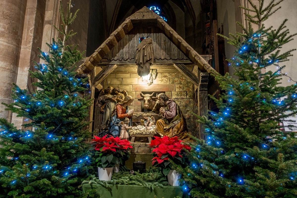 Nativity scene surrounded by Christmas trees