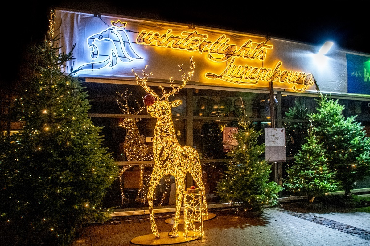 """Reindeer and """"Winter Lights"""" sign illuminated with Christmas lights"""