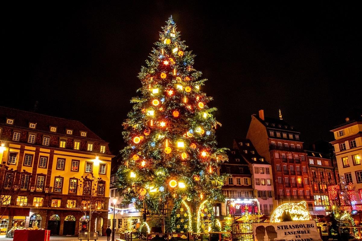 Christmas tree lit up at night