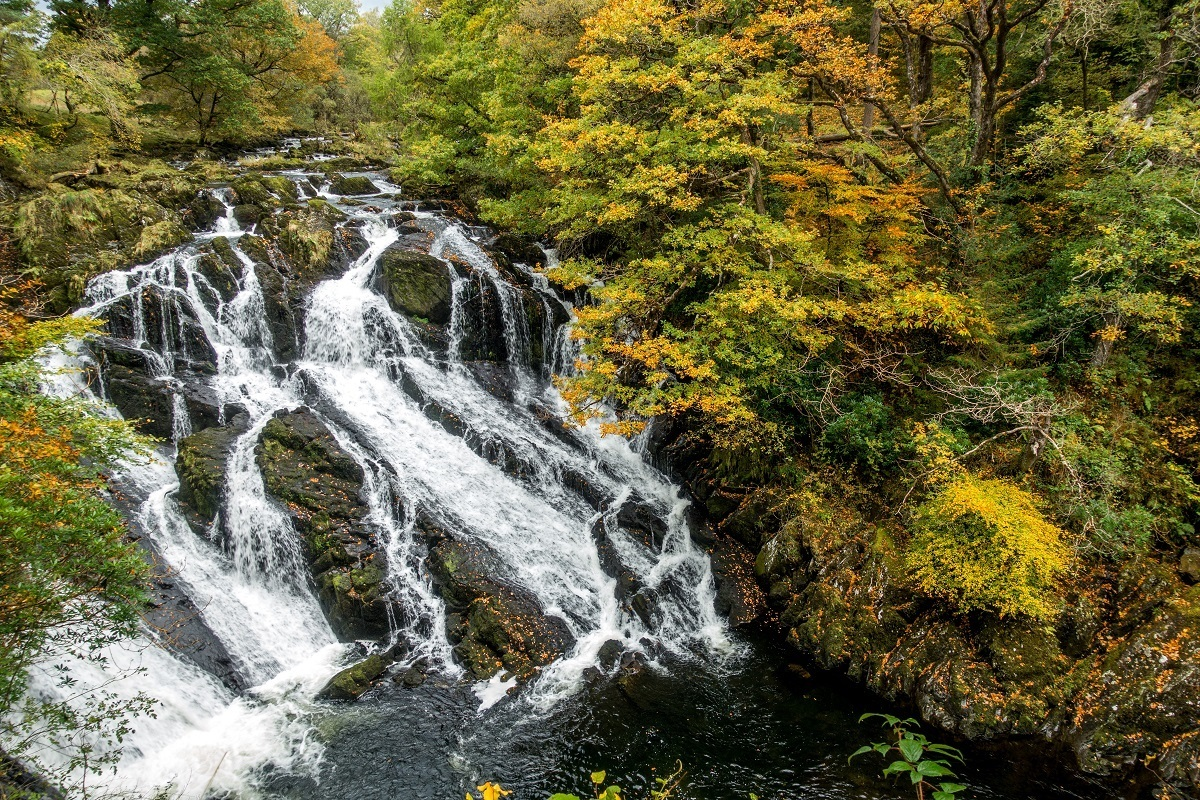 Waterfall surrounded by fall foliage