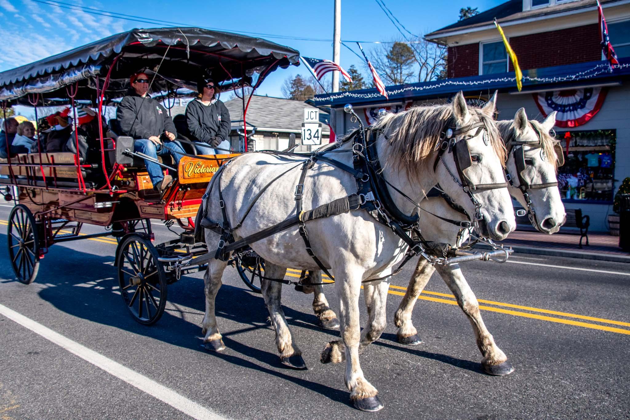 Horse-drawn carriage walking down a street