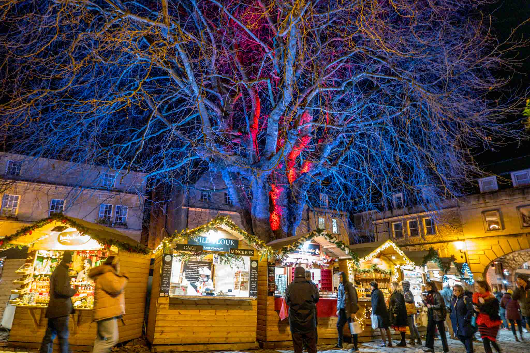 Vendor stalls at night in front of lit up trees