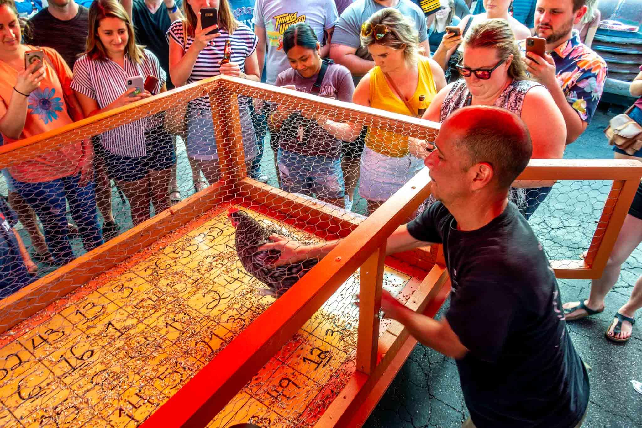 Man placing chicken onto bingo board
