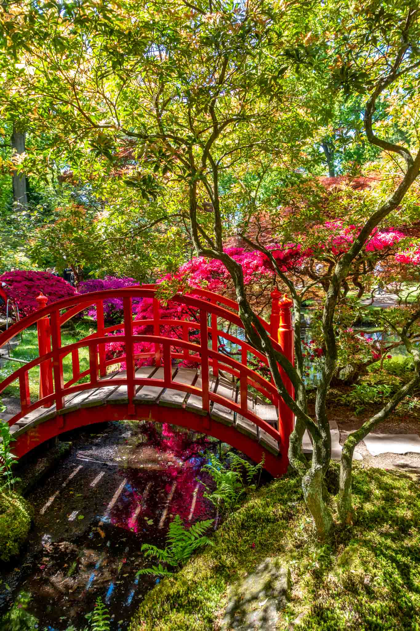 Red wooden bridge over a stream surrounded by trees and flowers