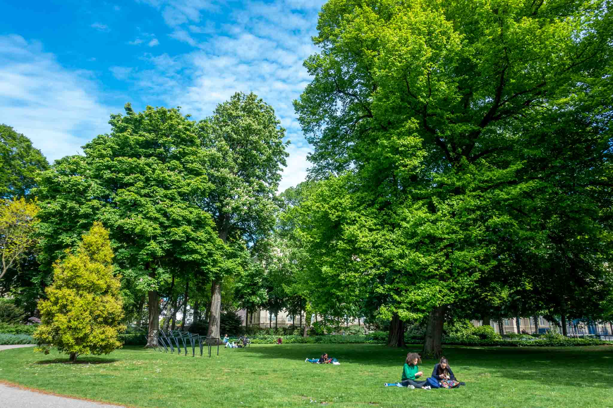 People lounging in the grass under trees