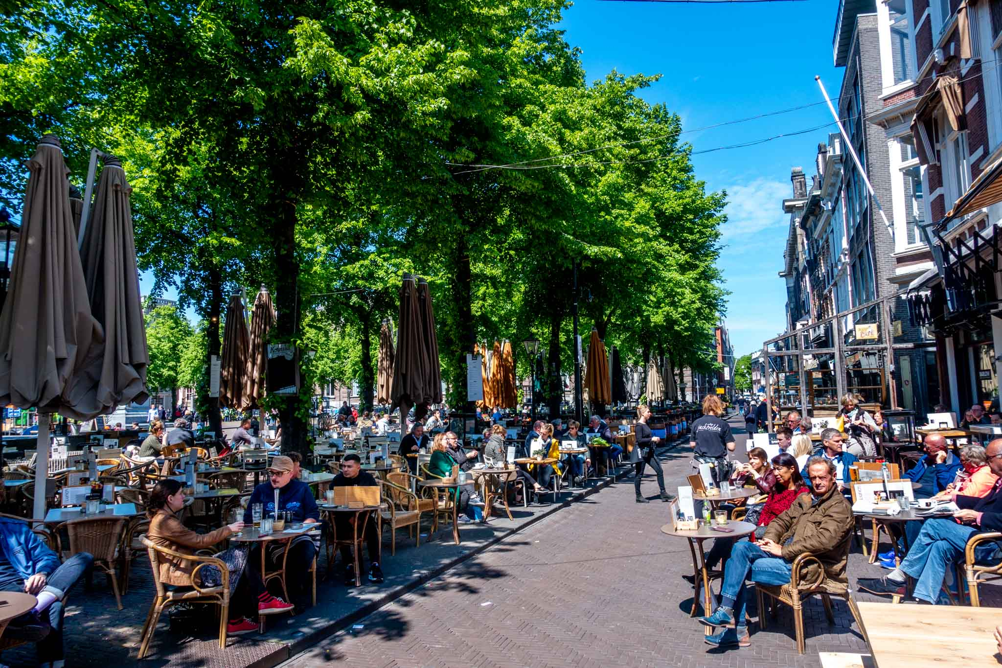 People at outdoor cafes on a tree-lined square