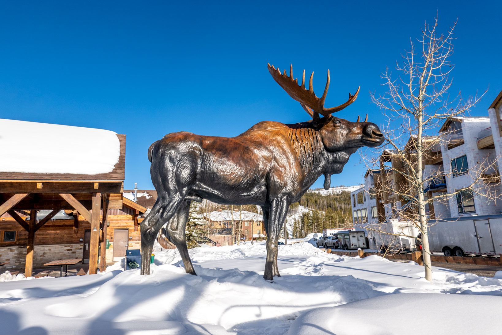 Moose sculpture in the snow