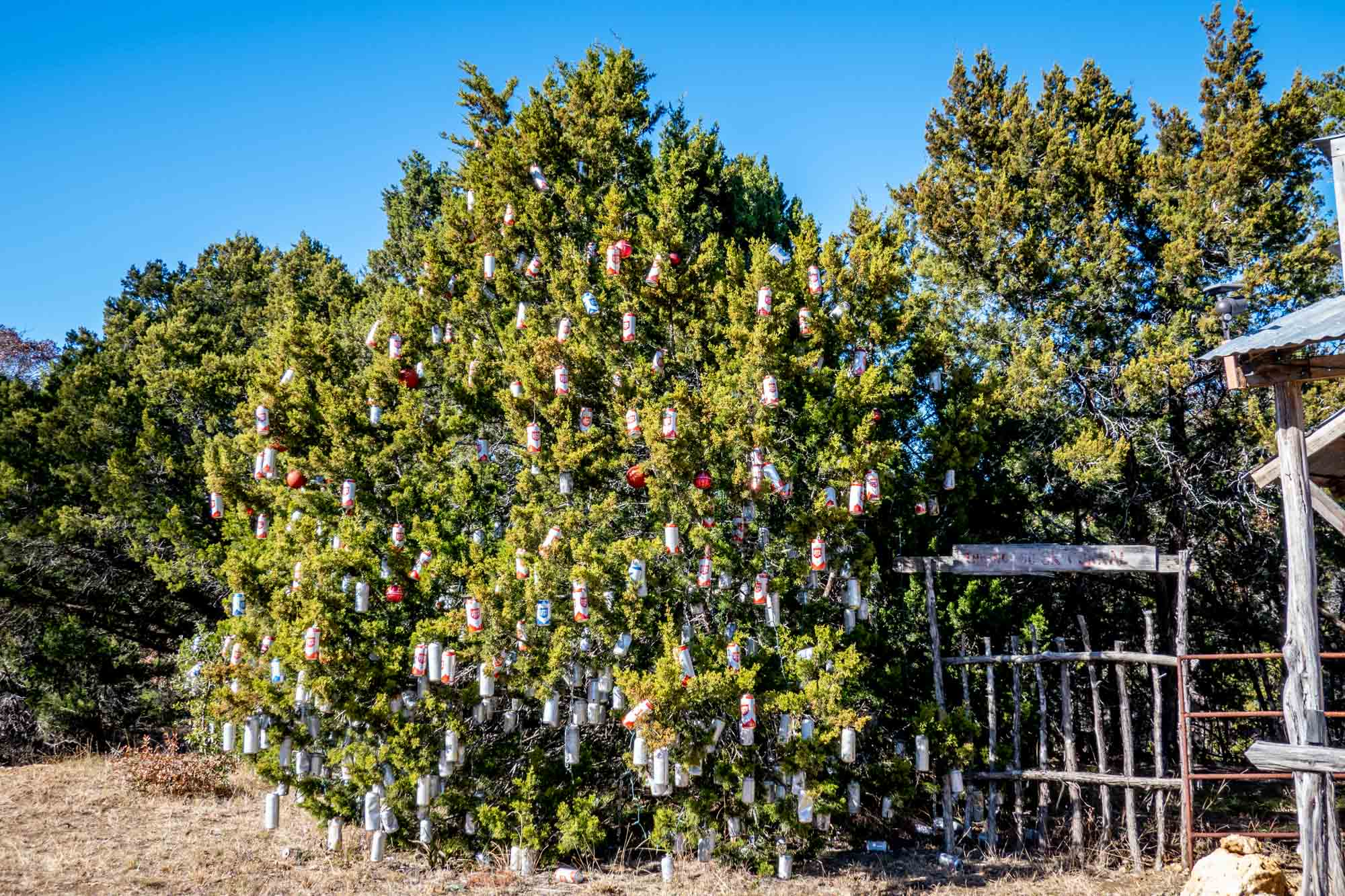 Large tree covered with beer can ornaments